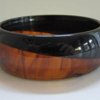Vintage Tortoise and Black Bangle